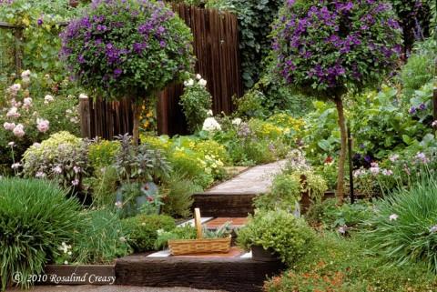 Huerto y jardín 7