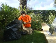 imagen La limpieza del jardín es una tarea de todo el año