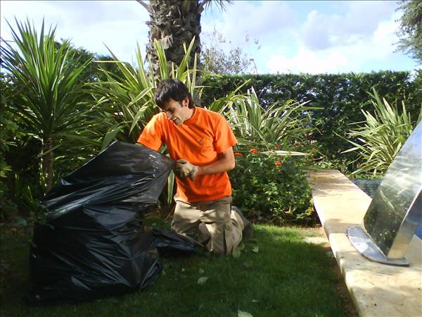 Limpieza jardín 1