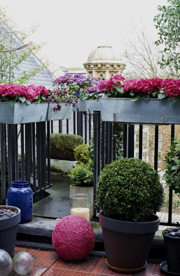 Consejos para un jardín en el balcón 2