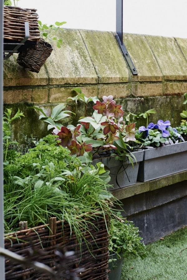 Consejos para un jardín en el balcón  4
