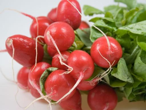 Cultivo intercalado de zanahorias y rábanos2