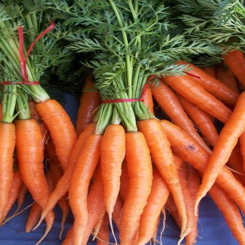 5 hortalizas de crecimiento rápido 2