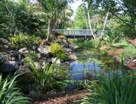 imagen Cómo crear un jardín tropical