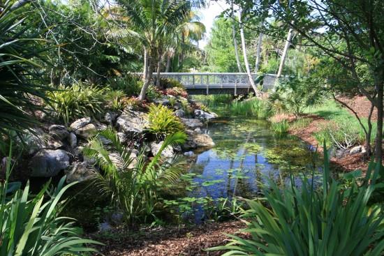 C mo crear un jard n tropical - Como crear un jardin ...