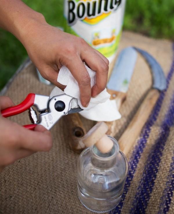 Limpieza herramientas de jardín 3
