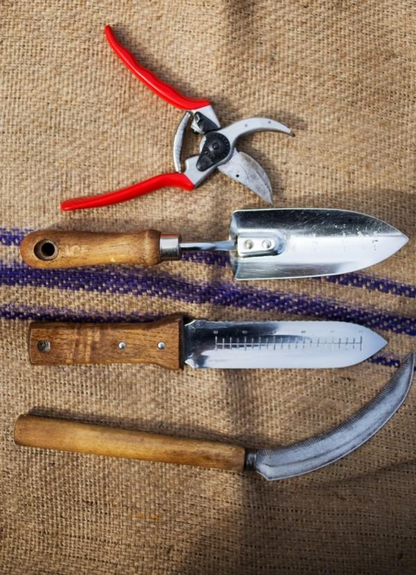 Limpieza herramientas de jardín 4