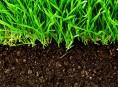 imagen Consejos para tener un suelo sano