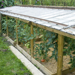 Protección de cultivos con medios físicos 4