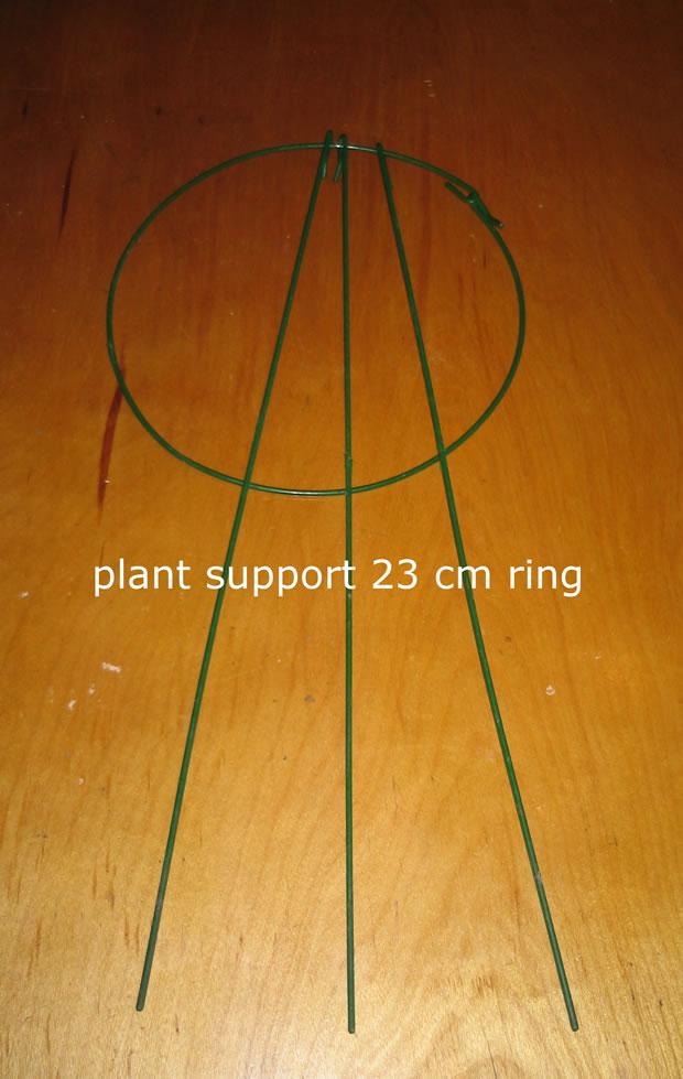 Cultivo invertido tomate bolsa 3