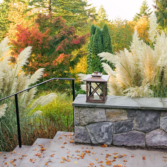 Jardín de otoño 1