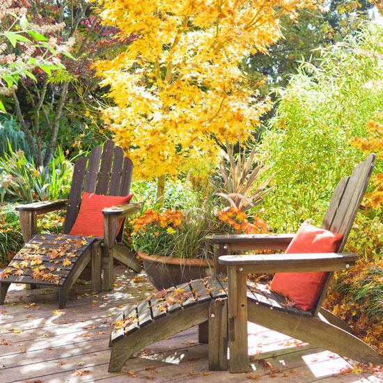 Jardín de otoño 5