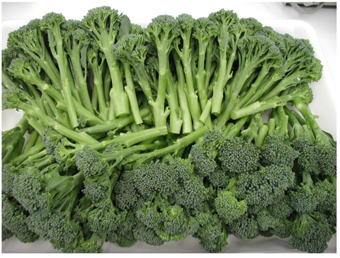 Bimi o broccolini 3
