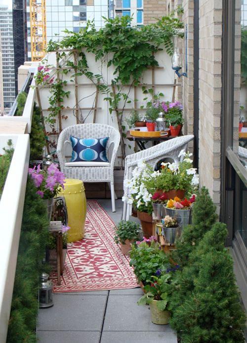Cultiva en el balcón 3