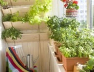 imagen 5 consejos para iniciar un jardín en el balcón