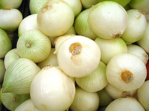 Cultivo cebollas