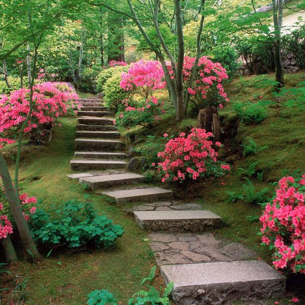 Composiciones con azaleas para jardines
