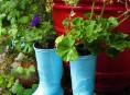 imagen 5 consejos para ahorrar dinero en tu huerta y jardín al cultivar