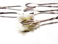 imagen Flores comestibles: características y precauciones