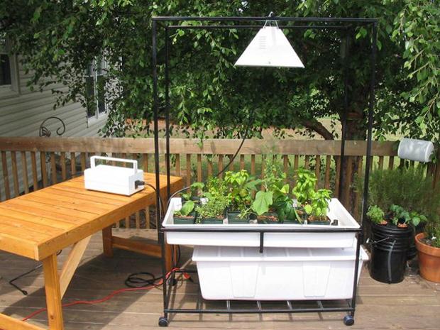 Cultivos hidropónicos 3