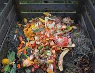 imagen Qué hacen los fertilizantes a las plantas