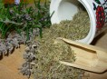 imagen El cultivo de hierbas provenzales en el huerto casero