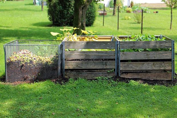 Compost casero 1