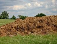 imagen Diferencias entre fertilizante y abono