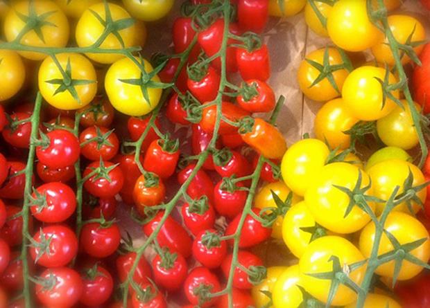 Tomate cherry amarillo 3