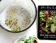 imagen Técnica para reducir el tiempo de germinación de semillas