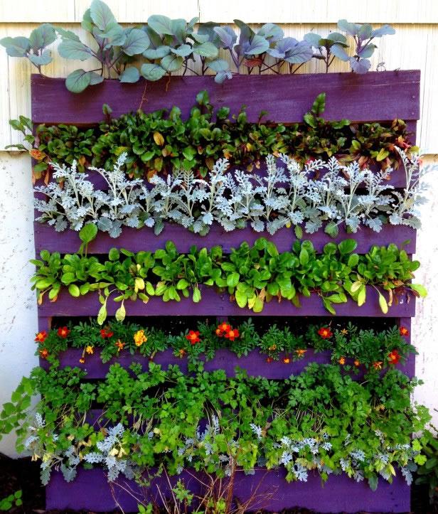 Ideas para reutilizar palets en el jard n for Jardines verticales con madera