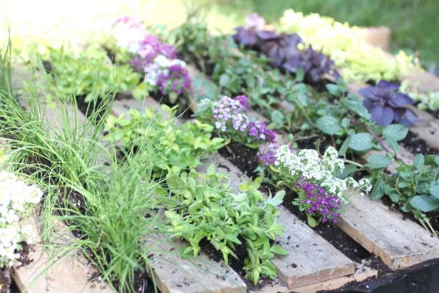 Palets en el jardín 4