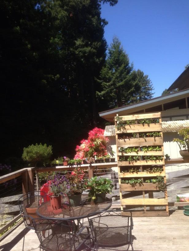 Palets en el jardín 9
