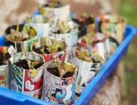 imagen Cómo hacer semilleros biodegradables con periódicos