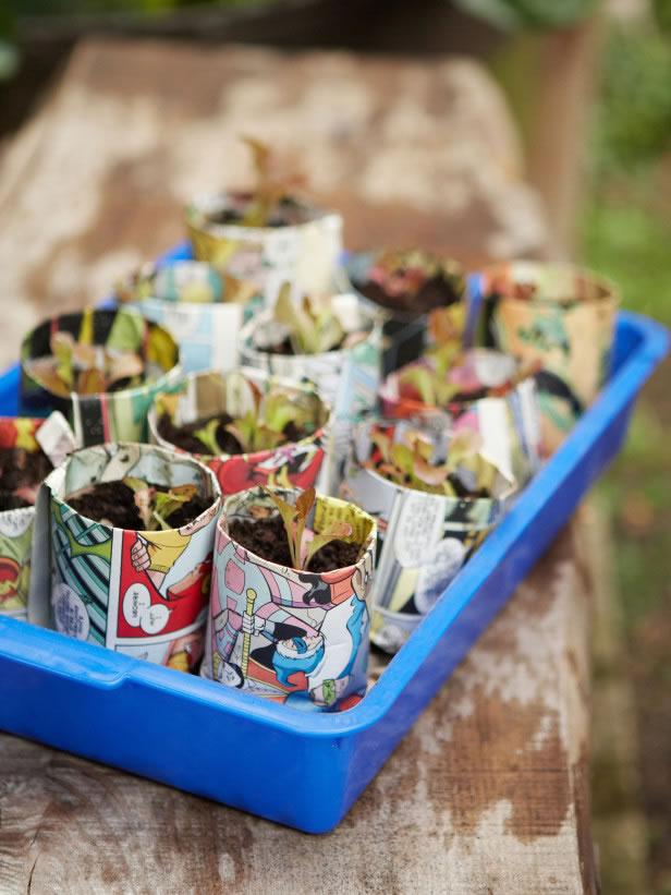 Cultivo reciclar 2