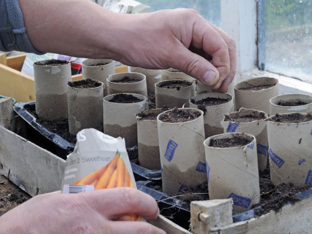 Cultivo reciclar 5