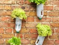 imagen 15 objetos y formas para iniciar plantas
