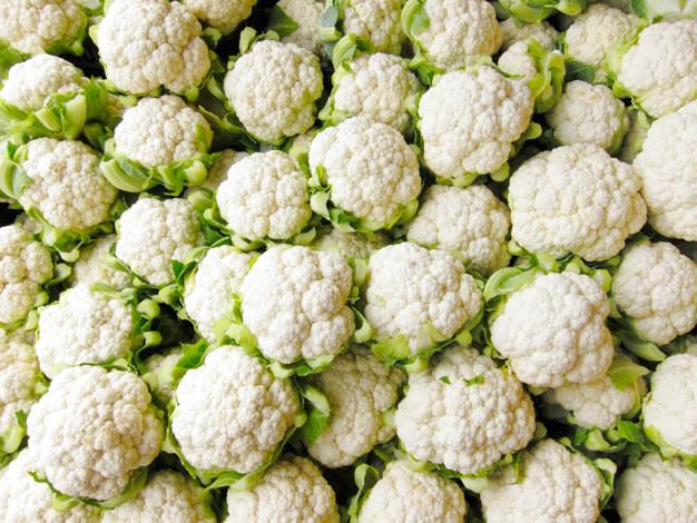 Cultivo coliflor 1