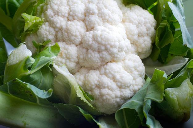 Cultivo coliflor 4