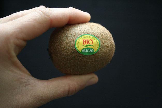 kiwi-desde-una-semilla-2