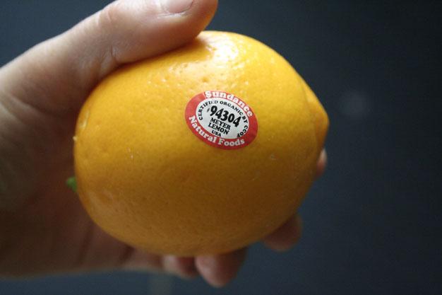 limon-desde-semilla-3