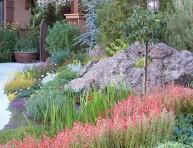 imagen El xeriscape, un estilo de jardinería sostenible