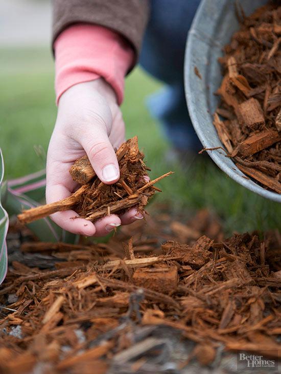 el-xeriscape-un-estilo-de-jardineria-sostenible-03