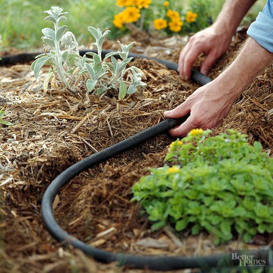 el-xeriscape-un-estilo-de-jardineria-sostenible-05
