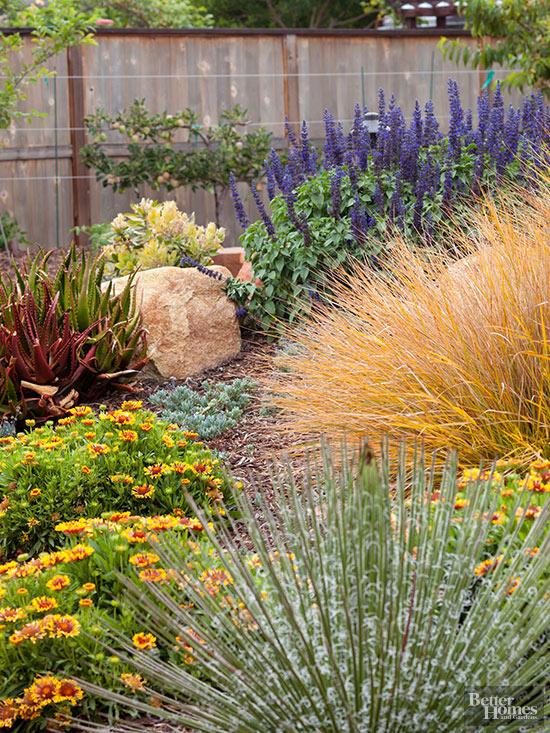 ispirazioni pavimento Patio : Lo xeriscaping: una forma di giardinaggio ecosostenibile (come creare ...