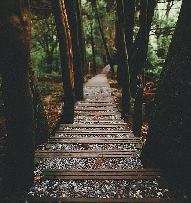 ideas-de-caminos-para-el-jardin-idea-1
