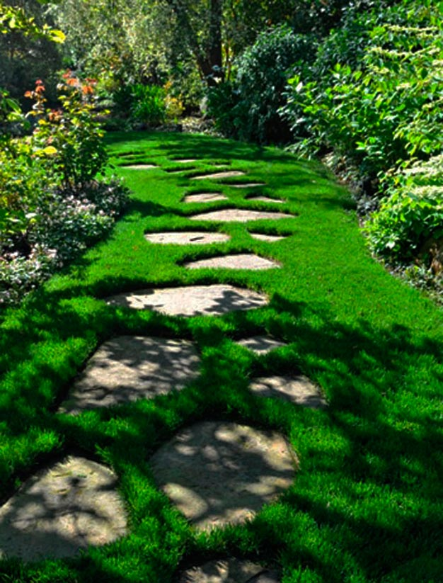 8 ideas de caminos para el jard n for Camineros de jardin