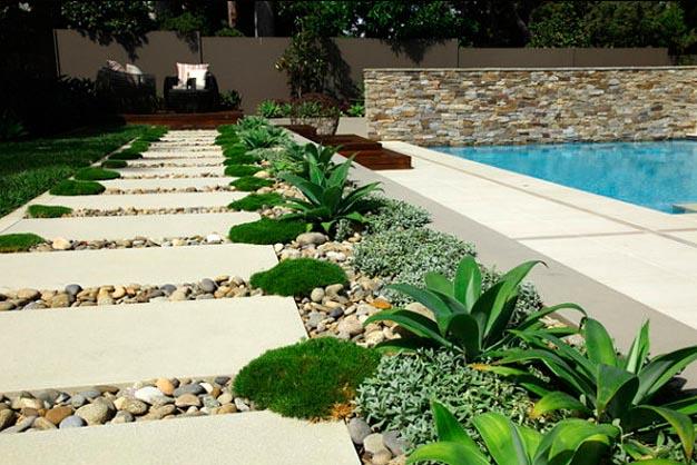Plantas perfectas para sembrar en un camino de jard n for Canteros con piedras y plantas