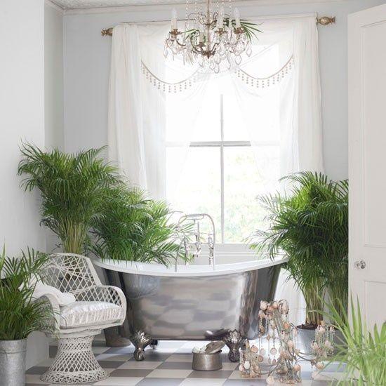 plantas-tropicales-de-interior-5