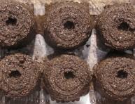 imagen Cómo hacer fáciles semilleros de tierra
